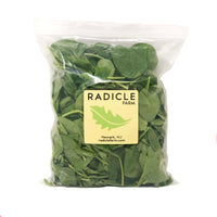 Baby Spinach 10oz bag