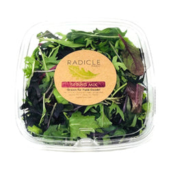 Spring Salad Mix 5oz clamshell