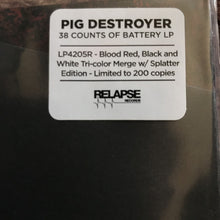 Load image into Gallery viewer, Pig Destroyer ‎– 38 Counts Of Battery