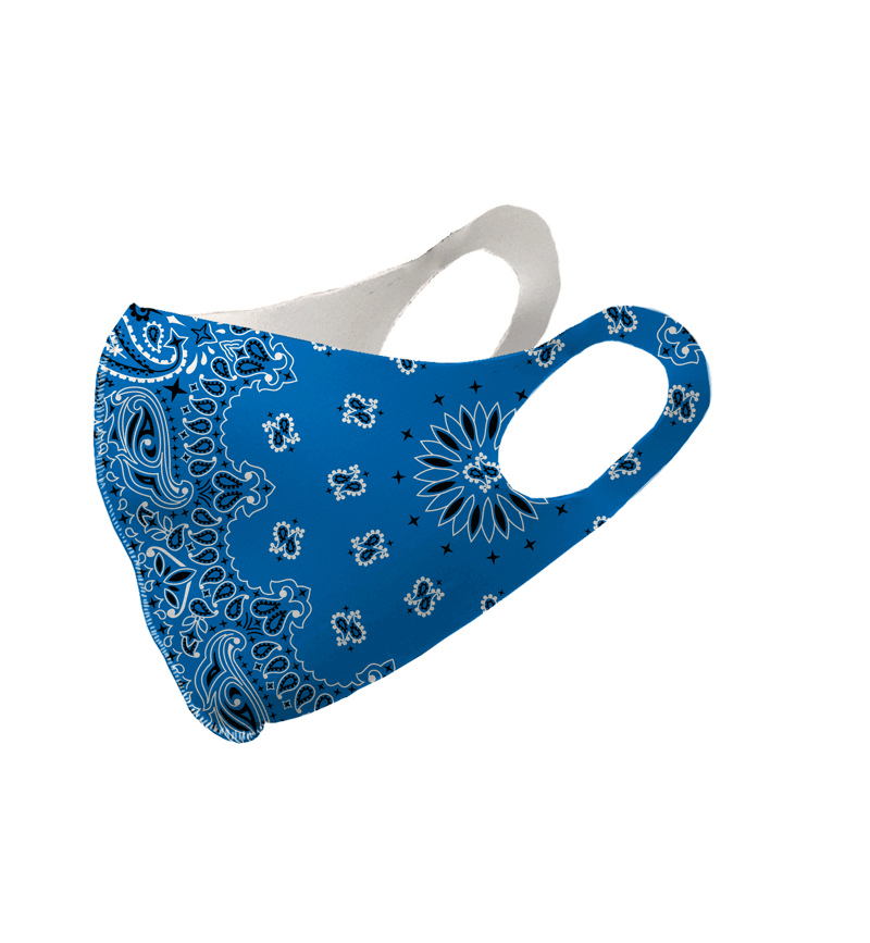 Blue Paisley Olson Mask