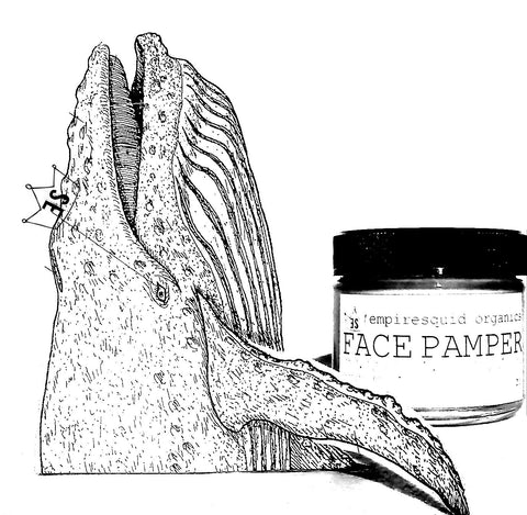 Face Pamper Rosehip Blend - EmpireSquid Organics