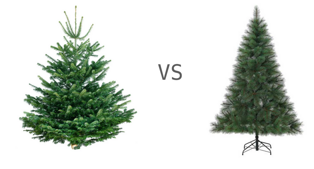 REAL OR ARTIFICIAL CHRISTMAS TREE: WHICH IS MORE ECO-FRIENDLY?
