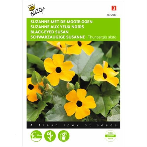 Black-Eyed-Susan Seeds