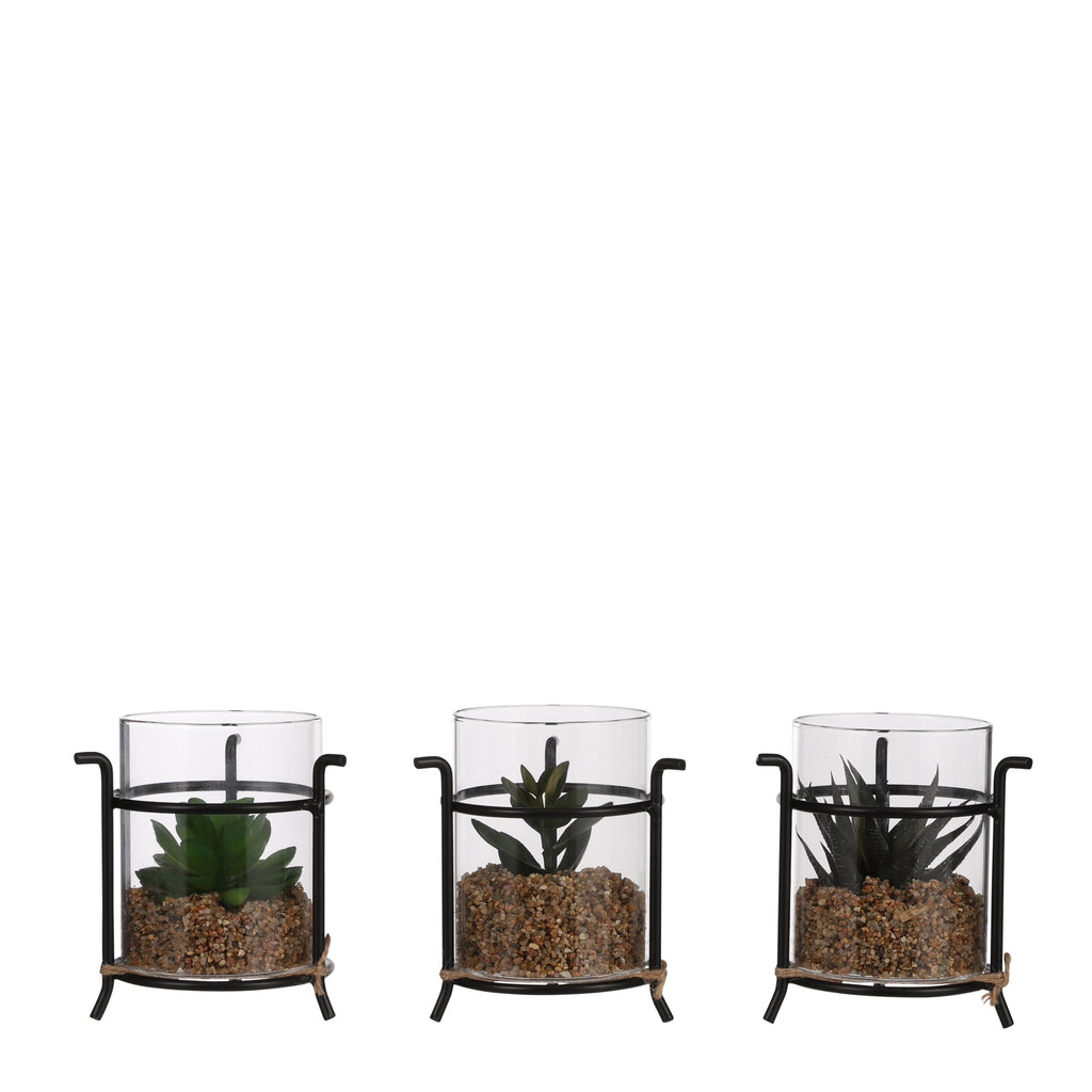 Set of 3 Artificial Succulent Holder