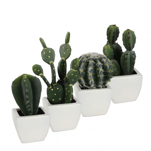 Set of 4 Artificial Cactus in White Pots