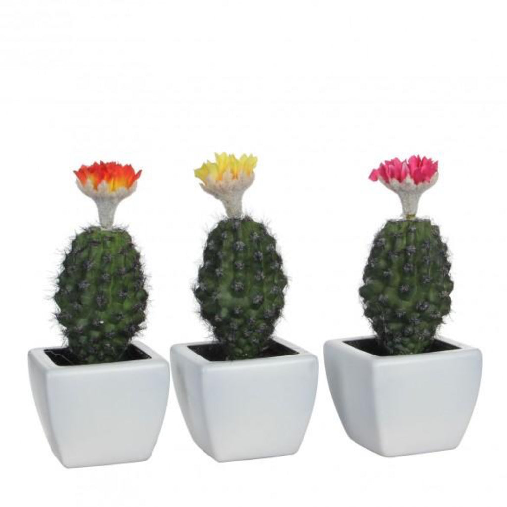 Set of 3 Artificial Cactus with Flowers