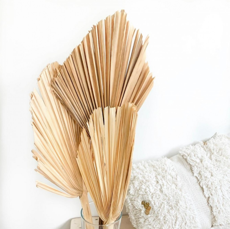 Dried Palm Spear Medium