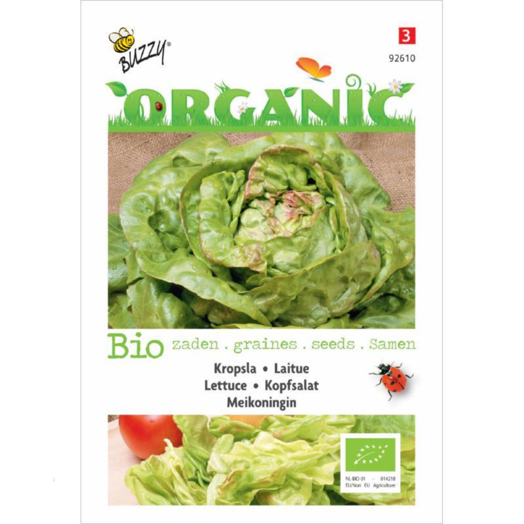 Organic Seeds Lettuce Mayqueen