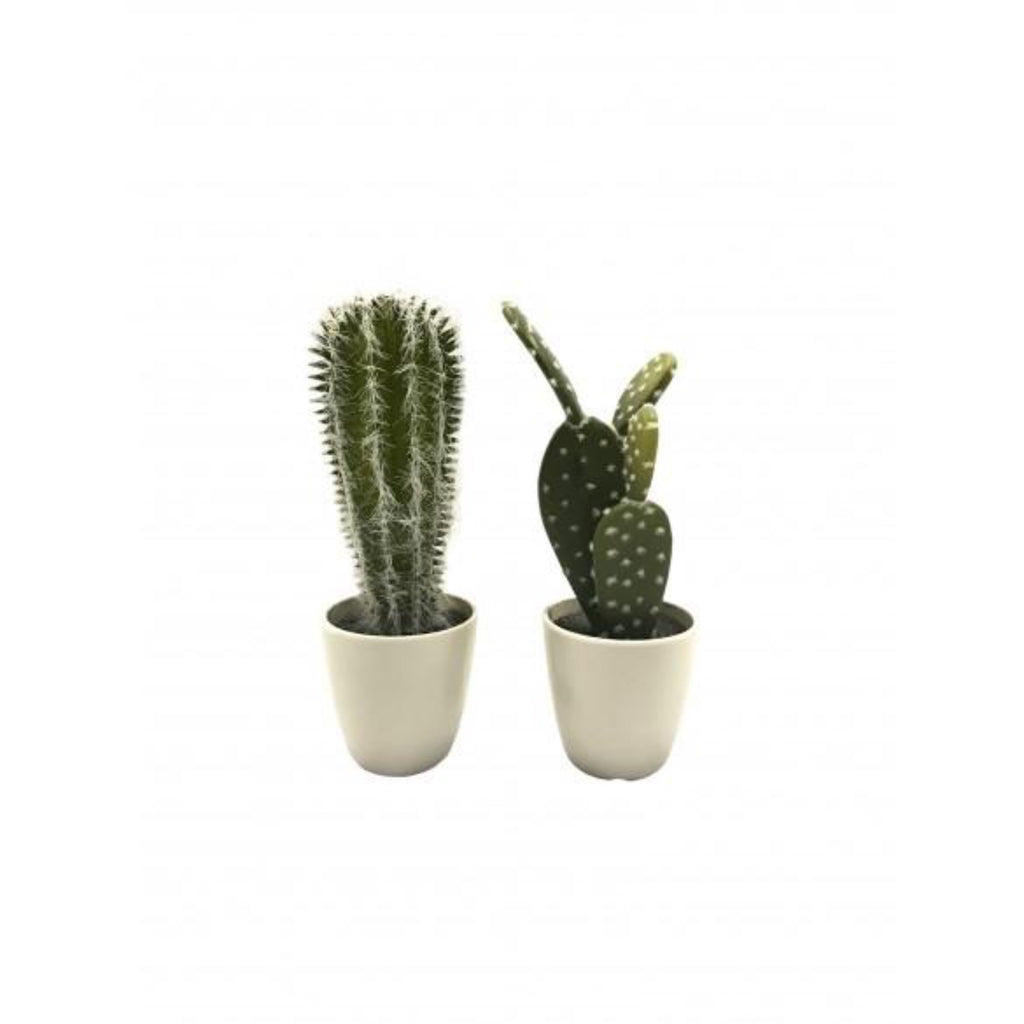 Set of 2 Artificial Cactus in White Pots