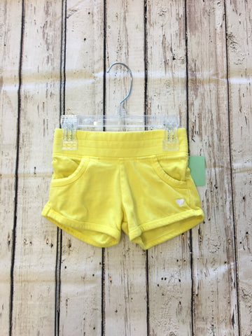 Toddler Shorts. 2T. Carter's