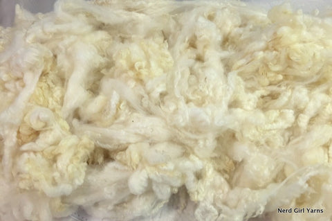 White Coopworth Washed Fleece - 2oz incremements