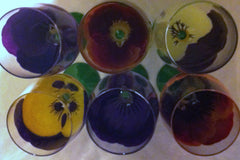 PANSY WINE GLASS Set of 6