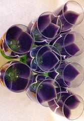 STAR GAZER LILY WEDDING WINE GLASSES Set of 9