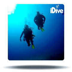private dive classes