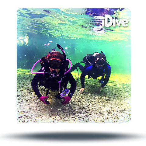 Scuba Certification Course - St Augustine, Jax, Palm Coast, Ponte