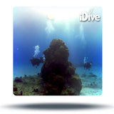 reef diving cozumel