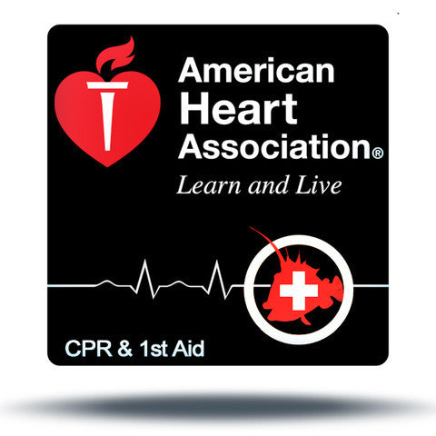 CPR and First Aid Certification – iDive Florida