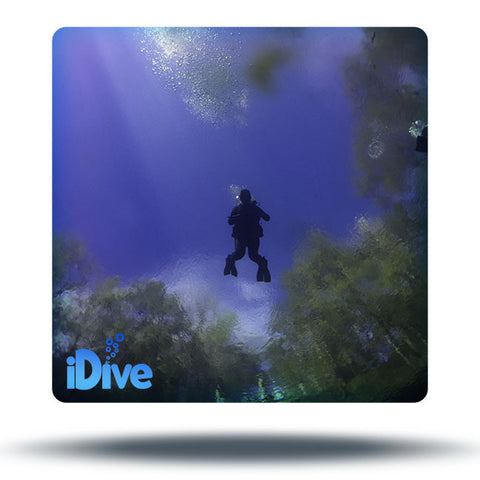 Rainbow River Dive and Dine