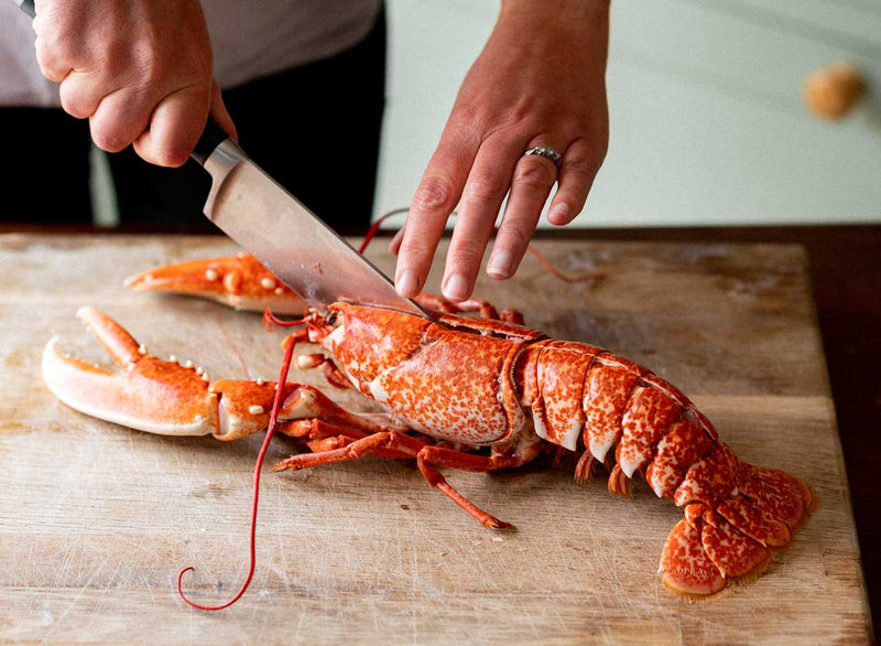 Cooked Lobster, Medium (WHOLE 400-600g live weight)