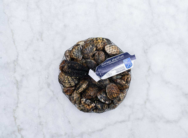 Fresh Dorset Palourde Clams