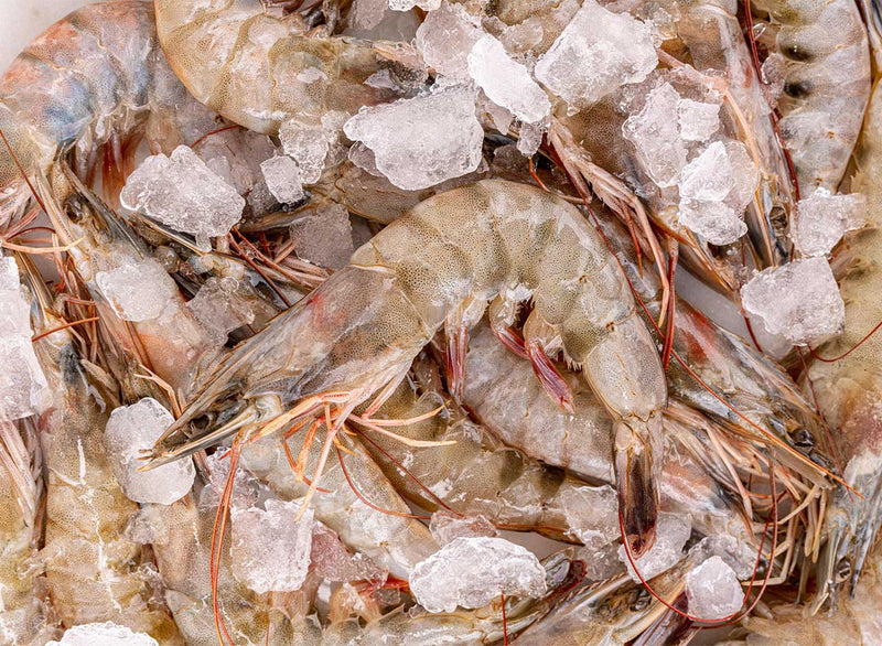 Raw, Shell-on King Prawns (Frozen)