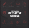 Oxidative Stress: The Secret Killer