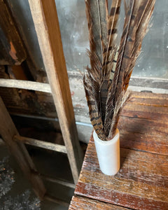 Quartz Vase and Feather Set (2)