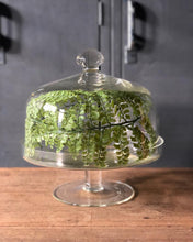 Load image into Gallery viewer, Glass Cake Stand w/ Dome