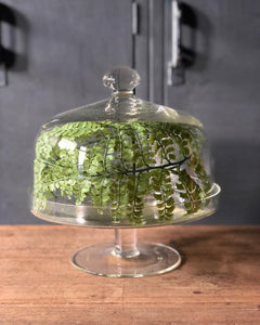 Glass Cake Stand w/ Dome