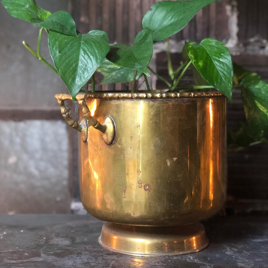 Brass Bucket w/ Faux-Bamboo Flourishes