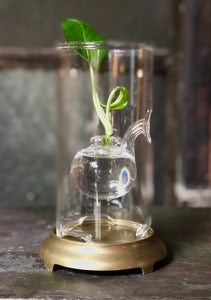 Glass Oil Lamp / Bud Vase