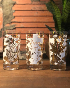 White and Gold Leaf Highball Set (8)