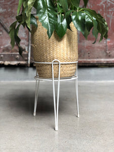 Rubber-Coated Plant Stand