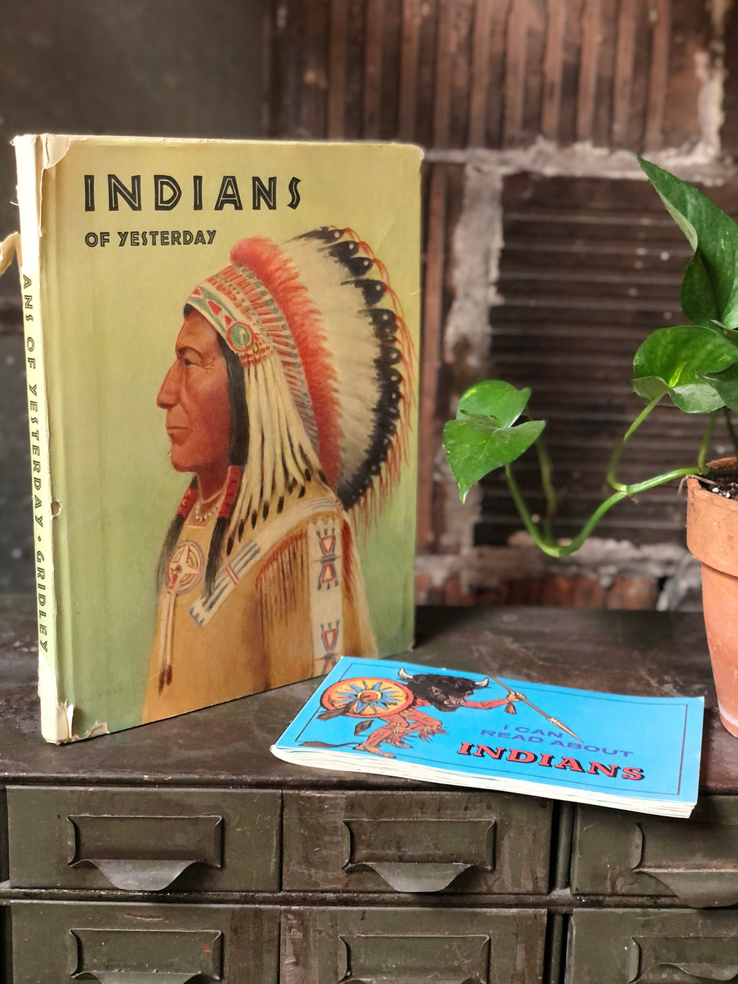 Native American Book Set (2)