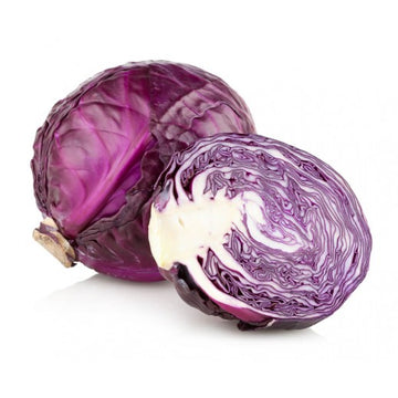 Red Cabbage - EA