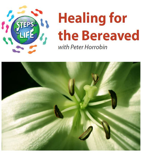 Steps to Life : Healing for the Bereaved