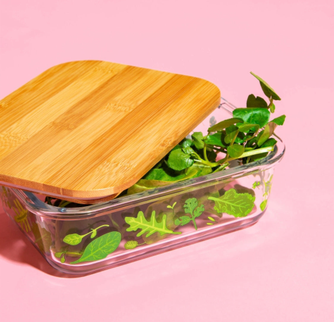 Glass Food Storage Box - Plants Large