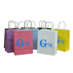 Kraft Paper Bag (Medium)