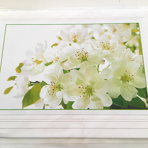 Art Card White Malus Blossoms