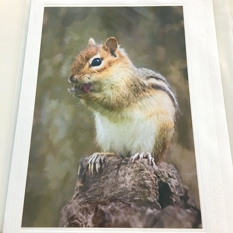 Art card, Chipmunk
