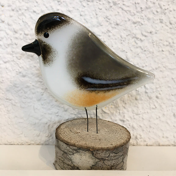 Fused glass bird