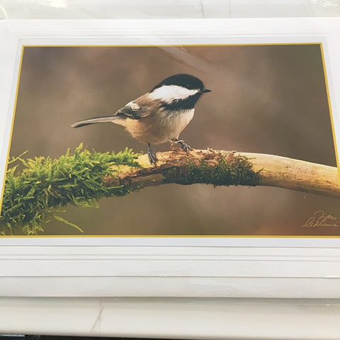 Art card Wee Chickadee