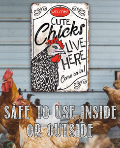 Cute Chicks Live Here - Metal Sign.
