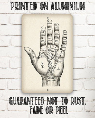 Vintage Palm Reading - Metal Sign.