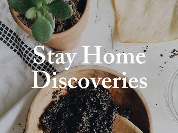 Stay Home Discoveries: Week 6