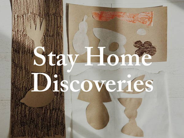 Stay Home Discoveries: Week 2