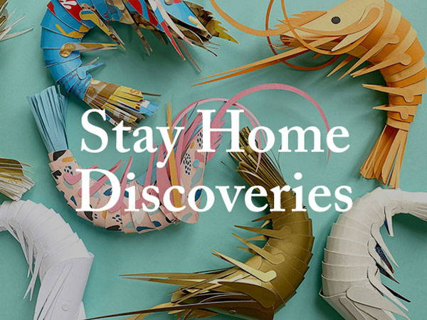 Stay Home Discoveries: Week 5