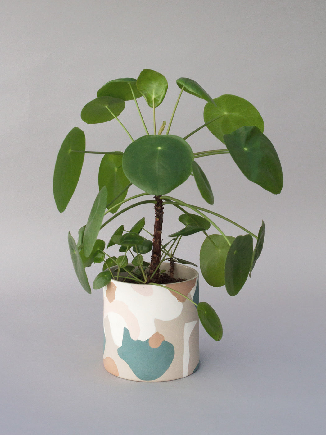 Collage Planter