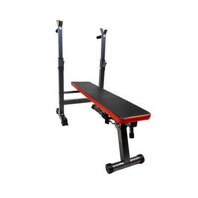 Elite Home Workout Adjustable Weight Bench with Dip Station