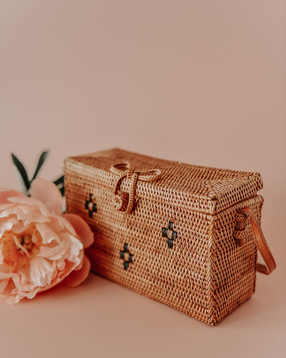 Image of Terra Woven Straw Box Bag